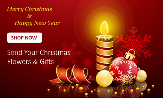 Christmas Flowers & Gifts | Online Flower Delivery by Myflowerflorist.com