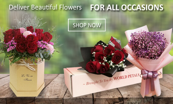 Send Flowers Online For All Occasions