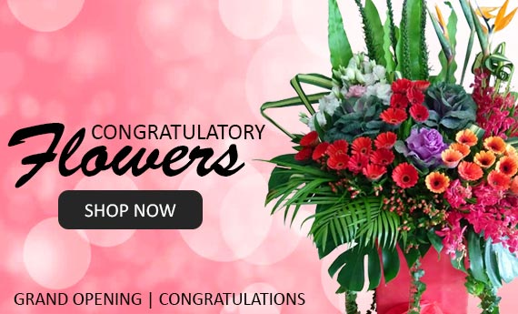 Grand Opening | Fresh Flowers Opening Stand & Congratulate Flowers | Myflowerflorist.com