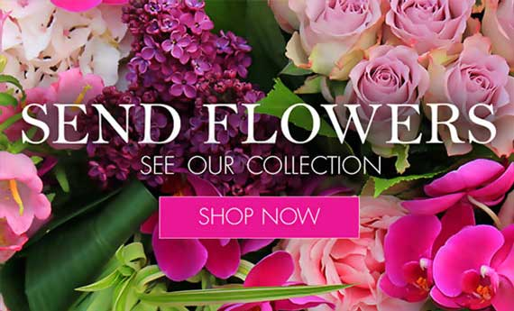 Our Collections | Myflowerflorist