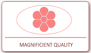 Magnificient Quality