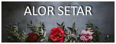 Alor Setar Florist