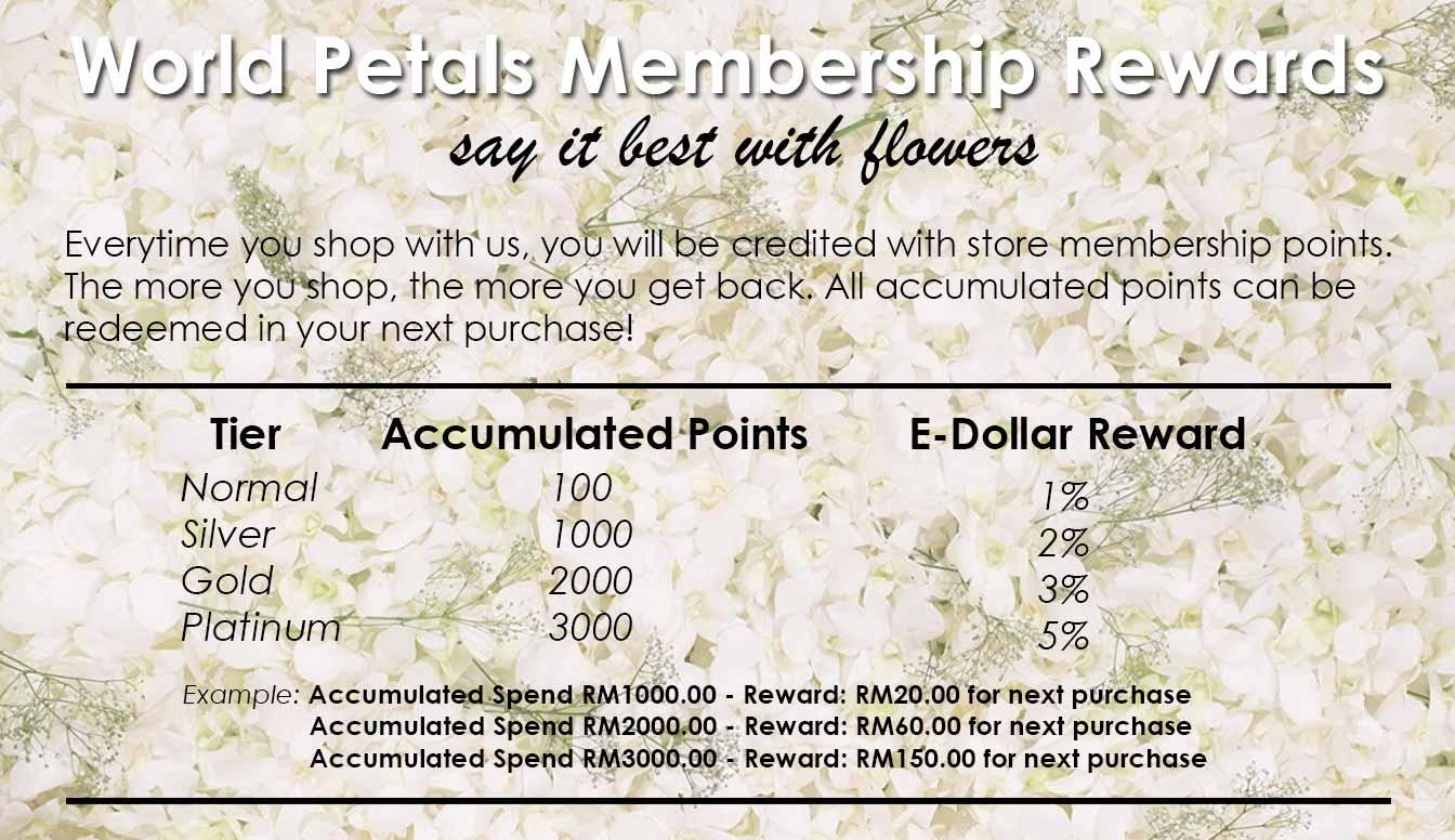 Membership Rewards Loyalty E-Dollar Program