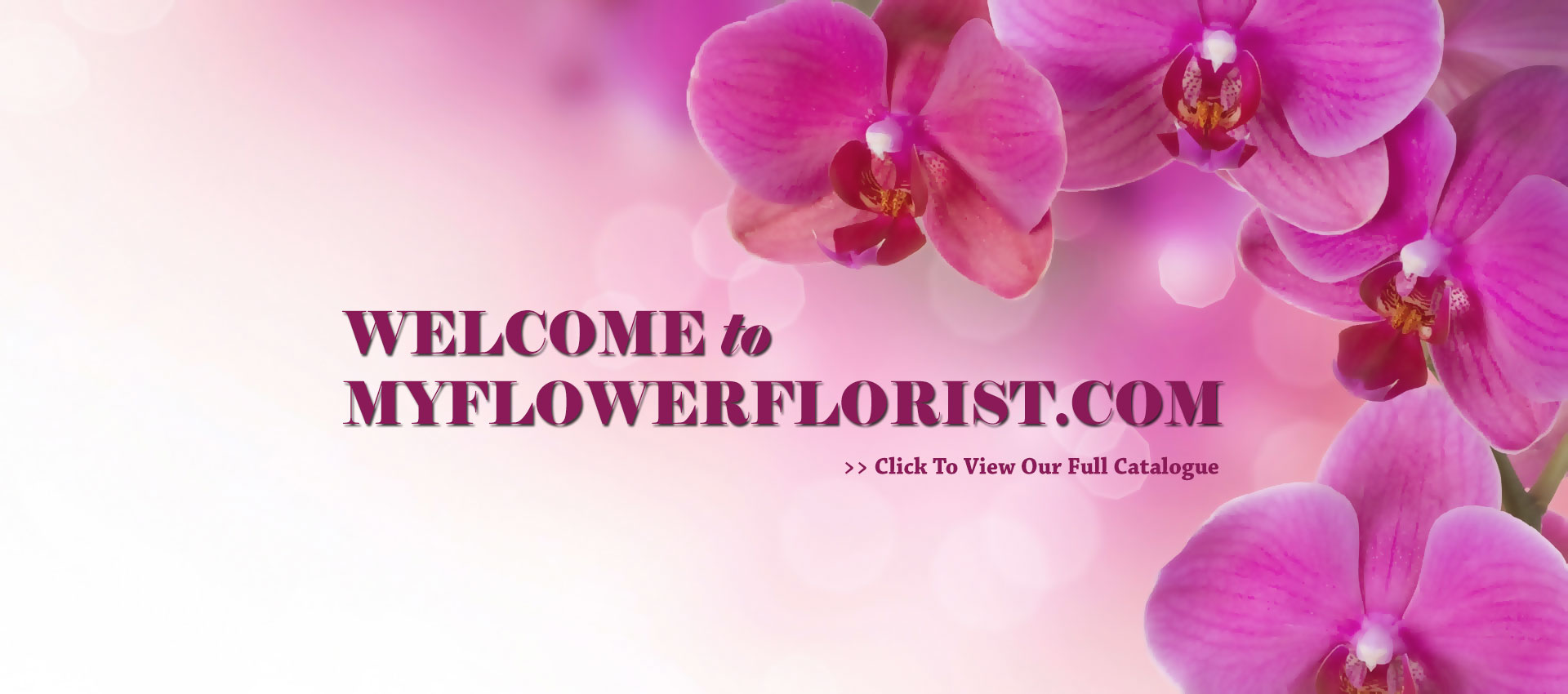 Myflowerflorist.com | Best Online in Malaysia | Online Flower Delivery Malaysia | Florist Malaysia