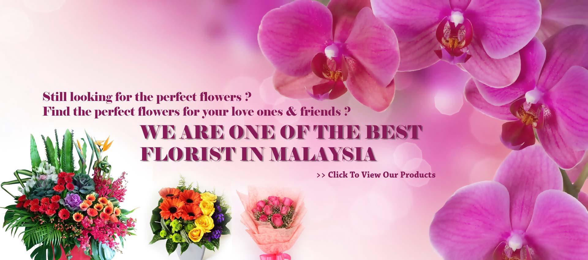 Myflowerflorist.com | Best Online in Malaysia | Online Flower Delivery Malaysia | Florist Malaysia