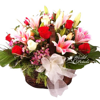 Floral Phyllis
