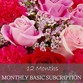 Monthly Basic Subscription (12 Months)