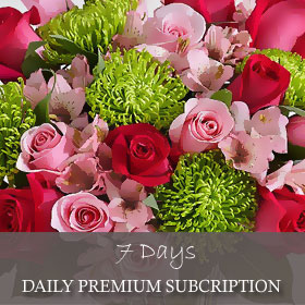 Daily Premium Subscription (7 Days)