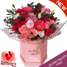 Surprise For Mom
