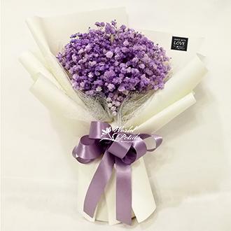 Purity Hyacinth
